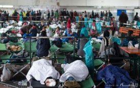 پنج دلیل برای اینکه در ترکیه پناهنده نشوید؟