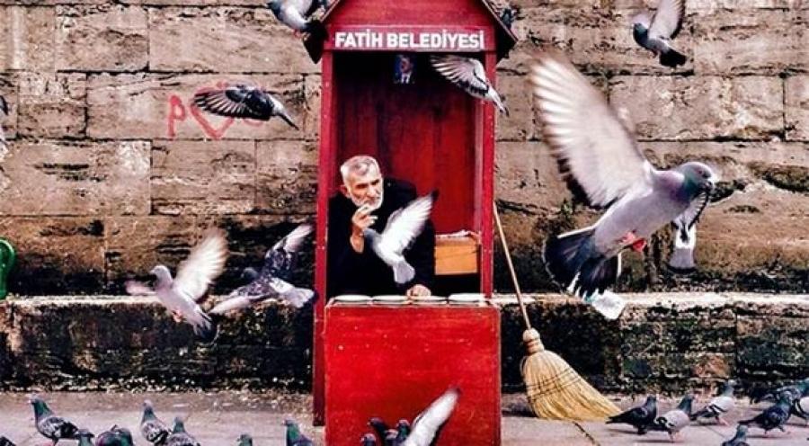 جایزه عکس آیفون ۲۰۱۵ به استانبول داده شد