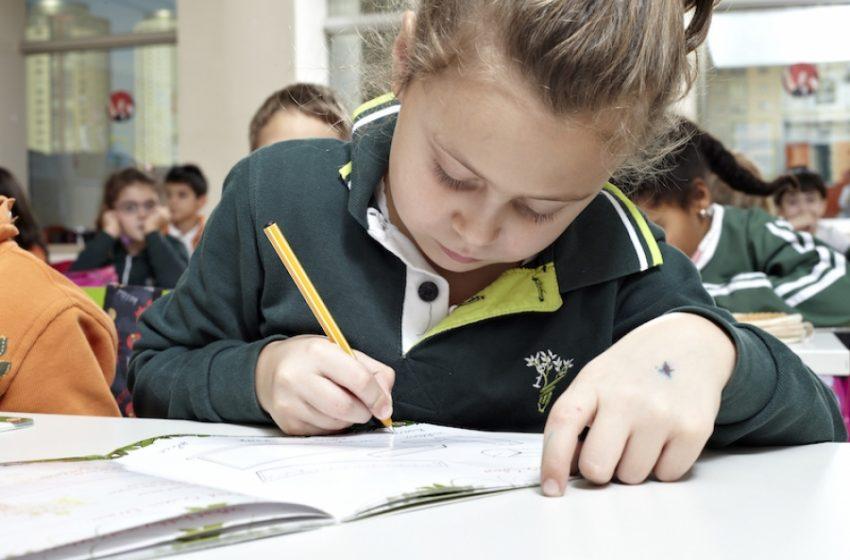 مدرسه بچه ها در ترکیه ،ایرانی یا ترک